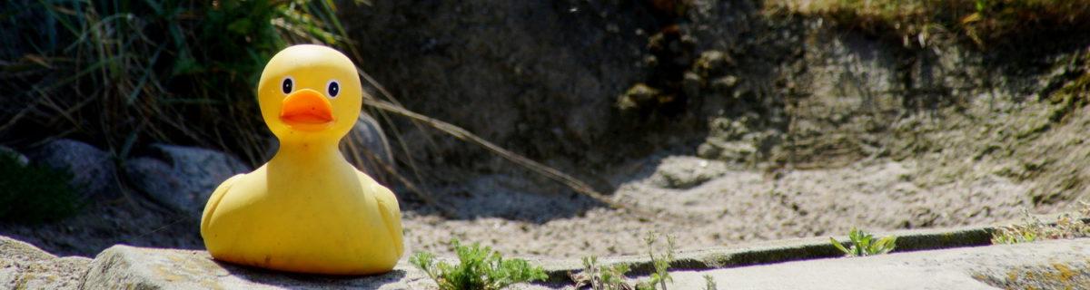 Seltenes Tier im Zoo am Meer