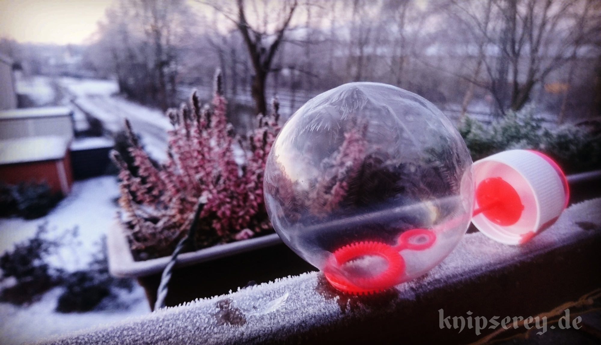 fotos gefrorene seifenblasen